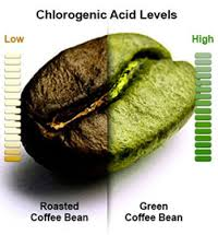 greencoffee2