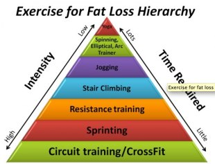 Fat burning exercise hierarchy